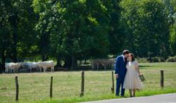 Destination wedding in Dijon France