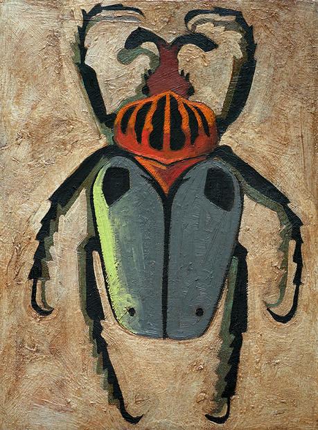Gray Beetle