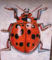 Oranger Lady Bug