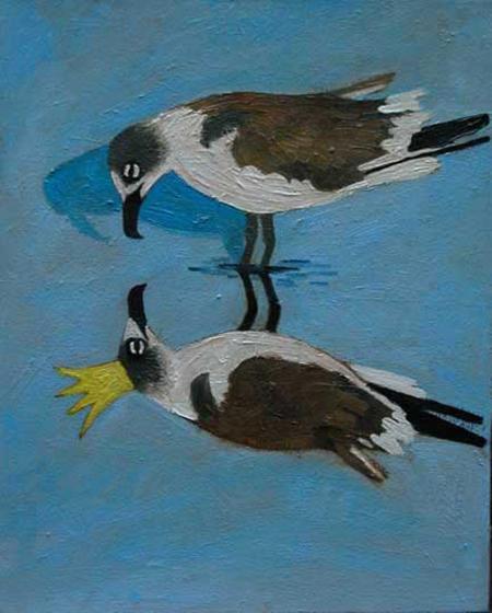 Gull King
