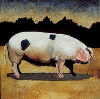 Early American Pig