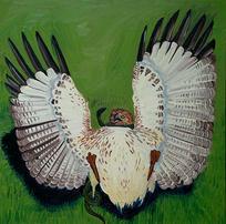Hawk and Serpent