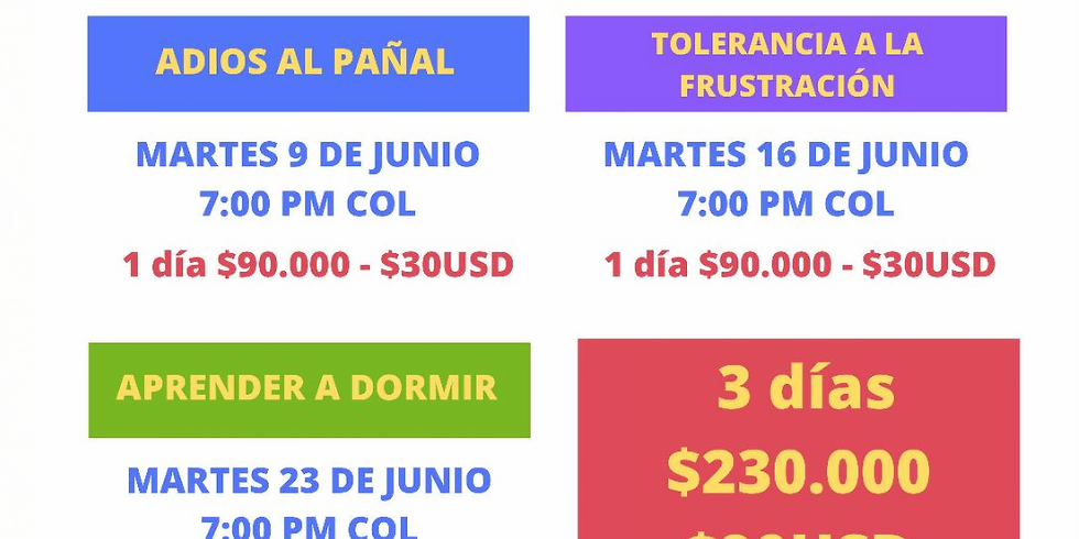 TALLER VIRTUAL DE 3 DÍAS