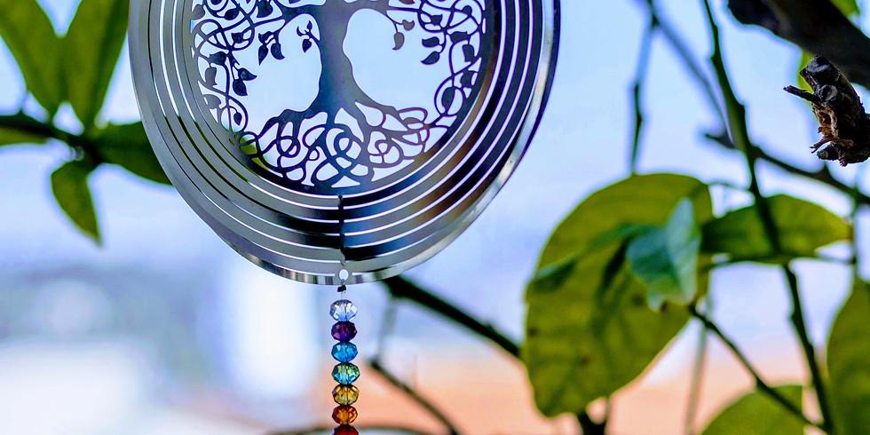 7 chakran och annan energianatomi