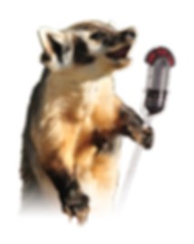 Soapbox Badger