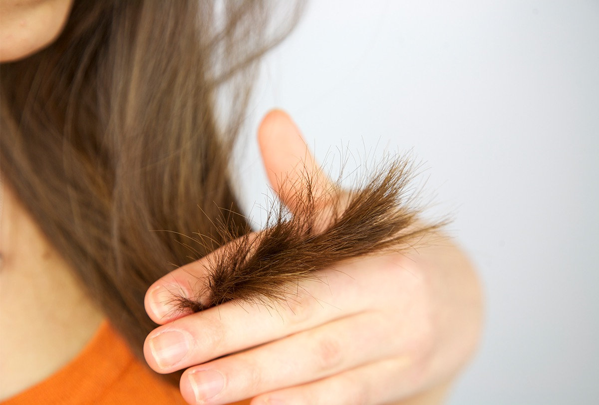 Hair Nipping (dry haircut)