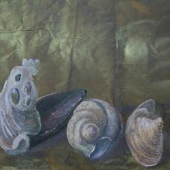 R. Caracci