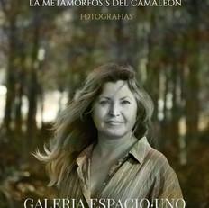 Inés Gontad