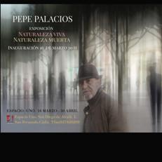 Pepe Palacios