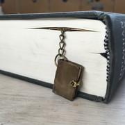 boekenlegger, bruin boek