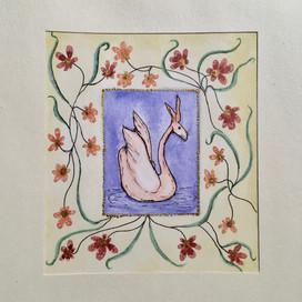 roze zwaanhaas