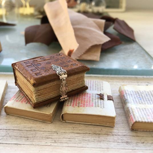 dik boek met zilveren gesp