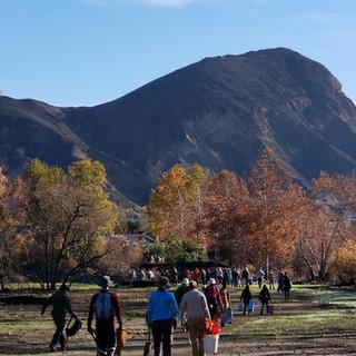 SANTA MONICA MOUNTAINS RESTORATION PROJECT
