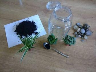 NATURE DIYs & MORE