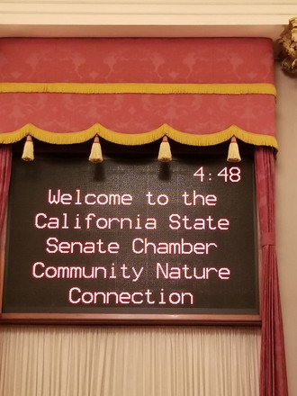 Welcome to the State Senate Chamber!