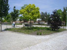Herfstpark 05.JPG