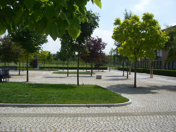 Herfstpark 06.JPG