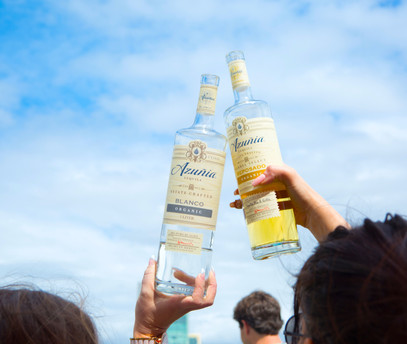 Tequila & Taco Music Festival