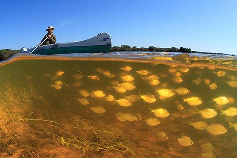 Canoeing Barra mansa Lodge Pantanal Luci