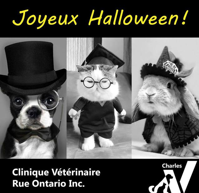 Joyeux Halloween à vous tous!