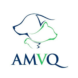 AMVQ_logo_enpratique_v-copie.jpg