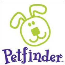 petfinder.jpg