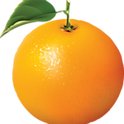 Fresh Orange head