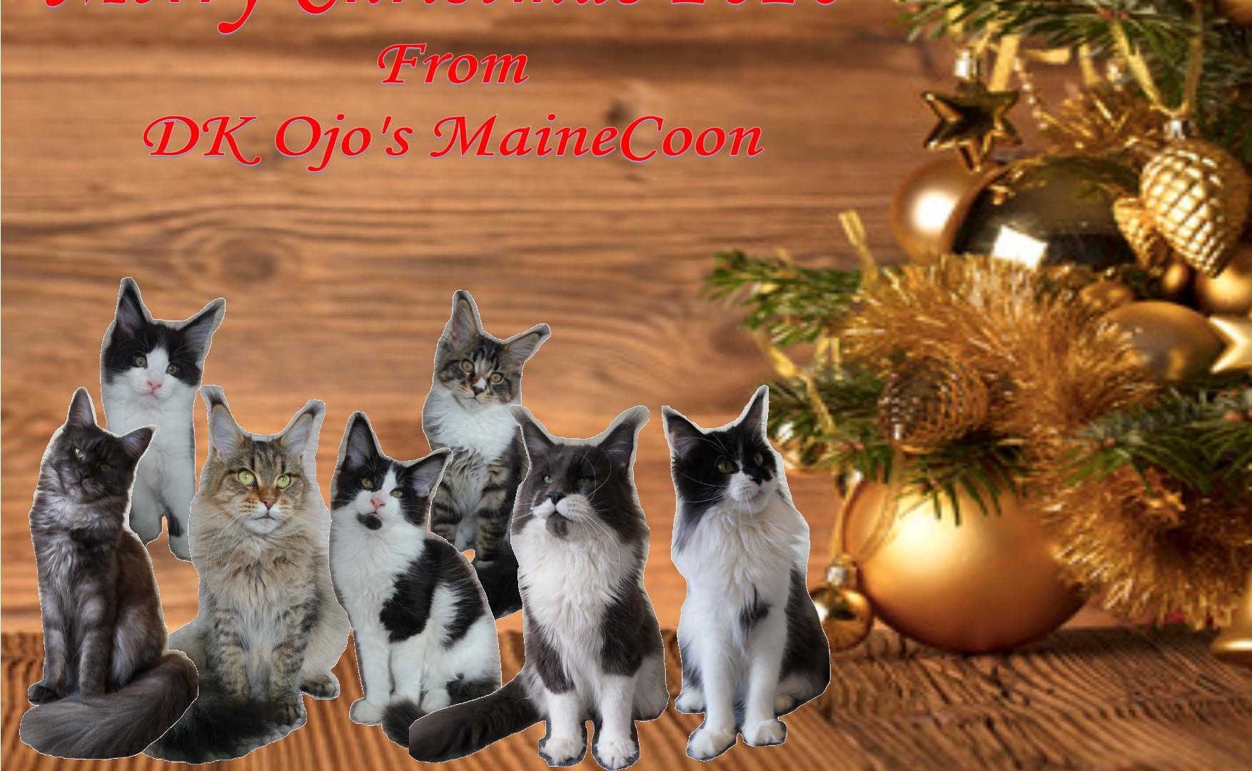 Christmas hjemmeside.jpg