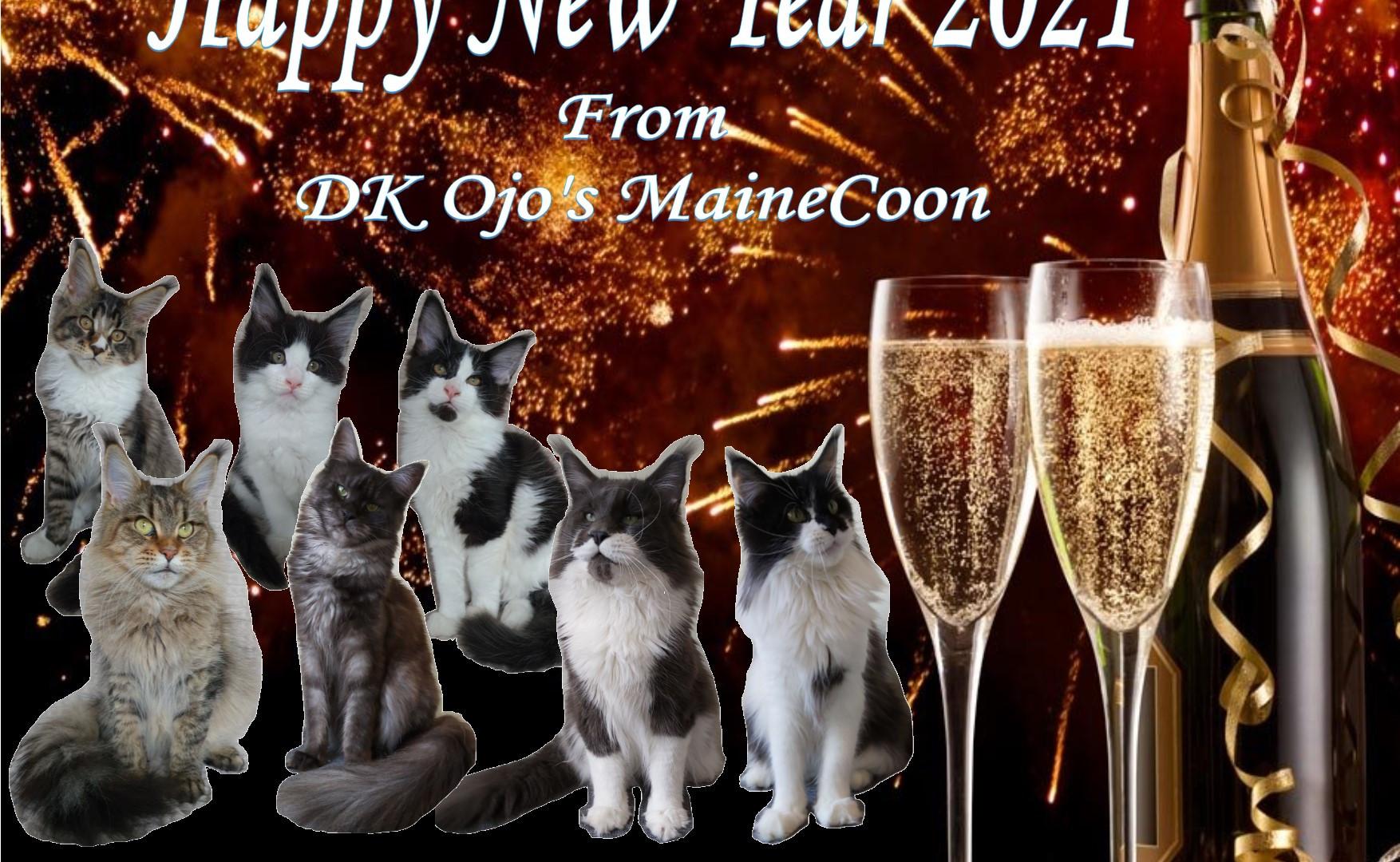 New year Hjemmeside.jpg