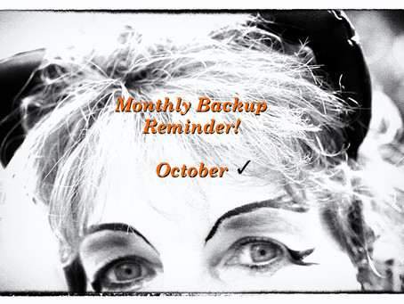 Monthly Backup Reminders!  Never Forget your Memories!