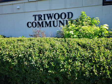 Triwood AGM 2020
