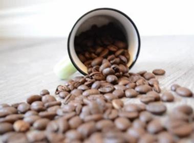 Beans_300x.webp