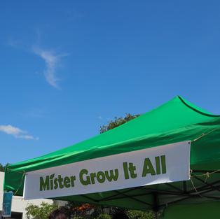 Mister Grow it All