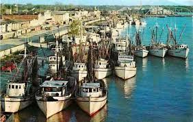 morgan city boats.jpg