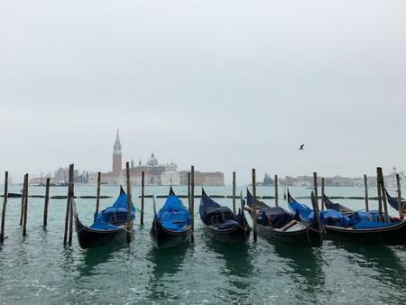 Venice Blue Gondolas Straight On.jpg