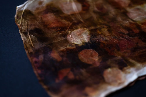 Australian Rust & Eco Natural Dyed Silk Scarf #05