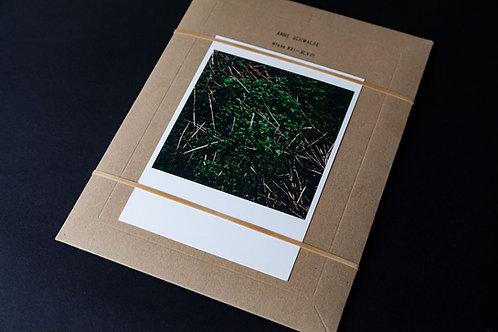 Wiese XXI by Anne Schwalbe