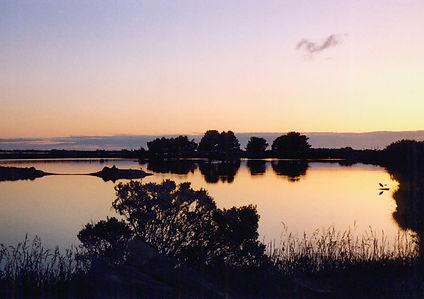eureka-humboldt-arcata-marsh.jpg