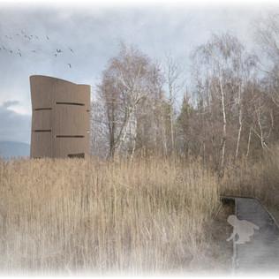 Concours observatoire oiseaux - Dolci Architectes