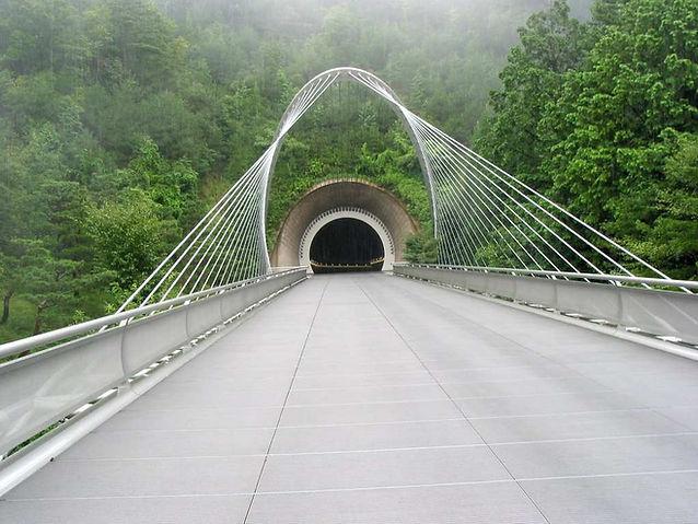 Shigaraki-Miho-Museum-Tunnel.jpg