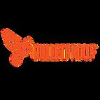 bulletproof-1.png