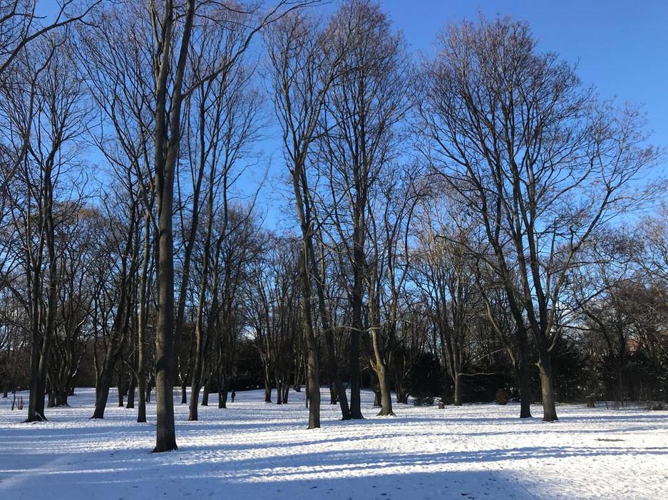 Humboldthein Park