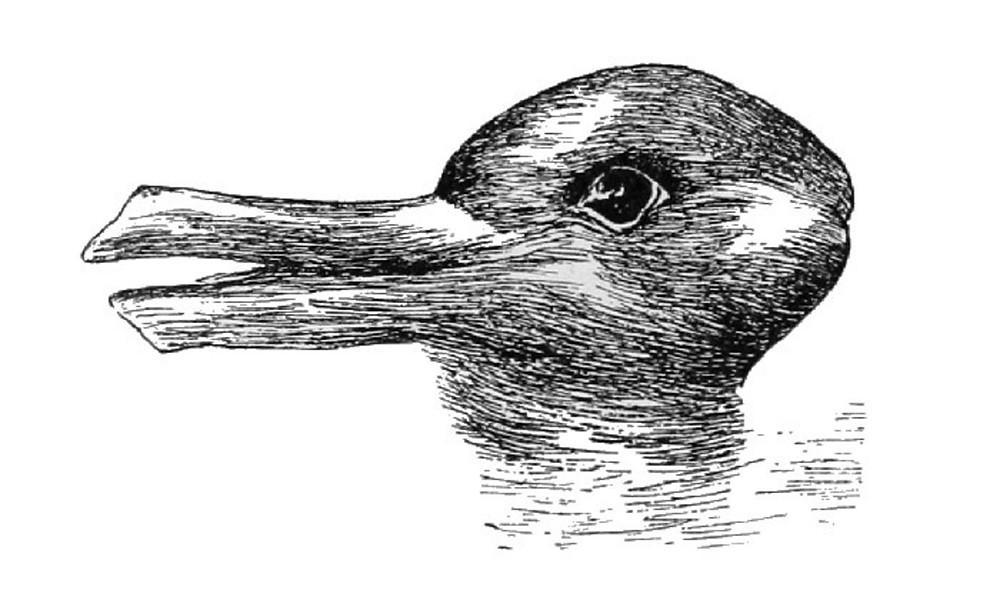 Kachna nebo zajíc?