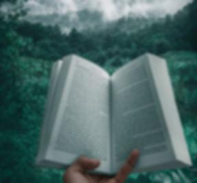 Reading Book_edited.jpg