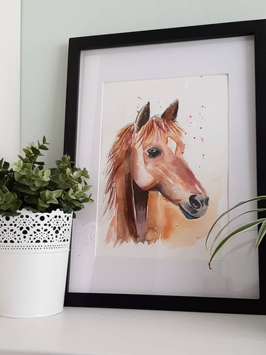 Horse portraits - framing available