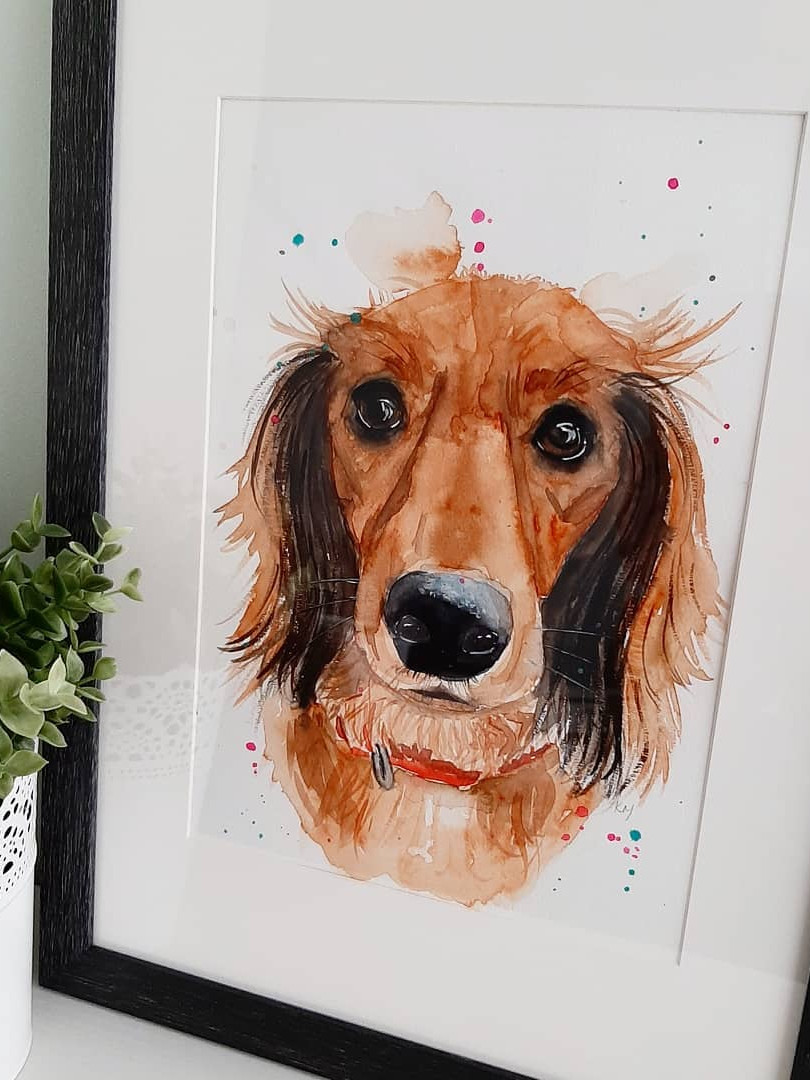 Pet portraits - framing available