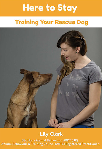 Here to Stay - Training Your Rescue Dog
