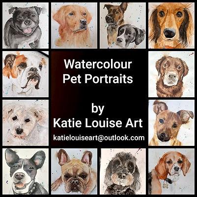 Pet portraits.jpeg