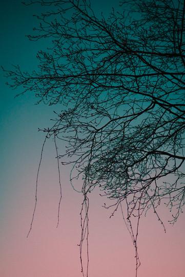 Portfolio-262.jpg