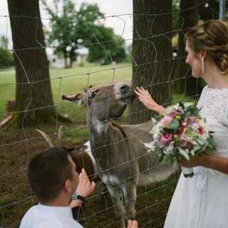 Hochzeitsfotograf aus Schwandorf